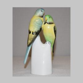 Papageienduo